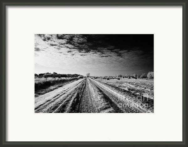 Snow Covered Untreated Rural Small Road In Forget Saskatchewan Canada Framed Print By Joe Fox