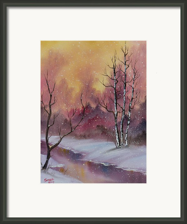 Snow Fall Magic Framed Print By C Steele