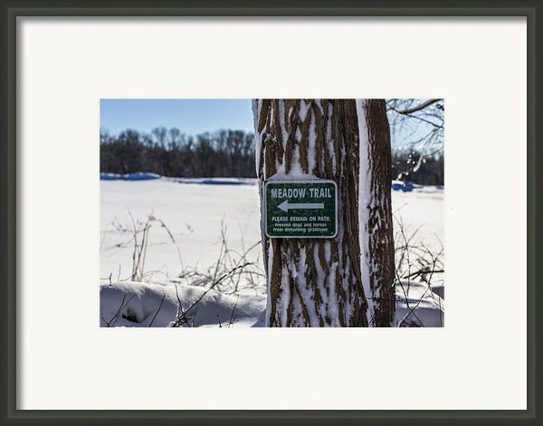 Snow In The Meadow Framed Print By Andrew Pacheco