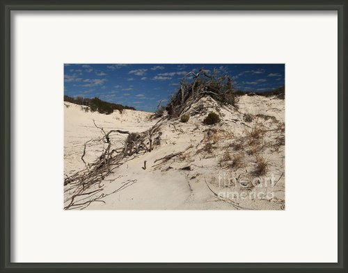 Snow White Dunes Framed Print By Adam Jewell