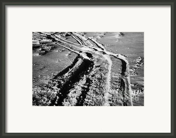 Snowmobile Tracks In Snow Across Frozen Field Canada Framed Print By Joe Fox