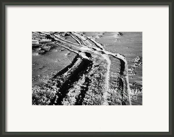 Snowmobile Tracks In Snow Across Frozen Field Canada Framed Print By Joe Fox