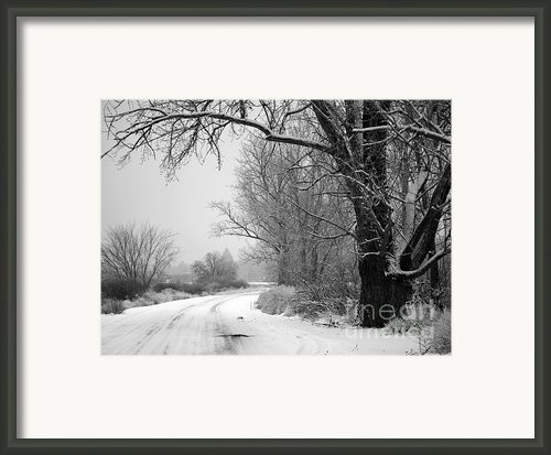 Snowy Branch Over Country Road - Black And White Framed Print By Carol Groenen