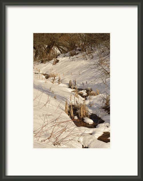 Snowy Brook Framed Print By Joshua Mccullough