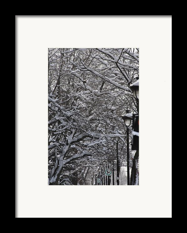 Snowy Way Framed Print By Frederico Borges