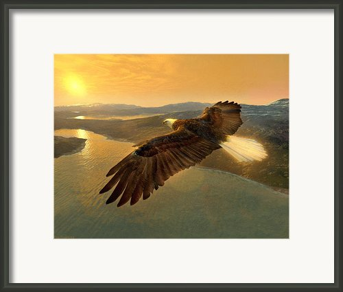 Soaring Eagle Framed Print By Ray Downing