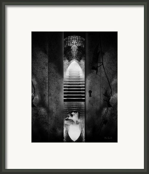 Soft Asylum Framed Print By Bob Orsillo