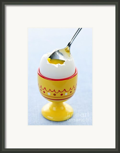 Soft Boiled Egg In Cup Framed Print By Elena Elisseeva