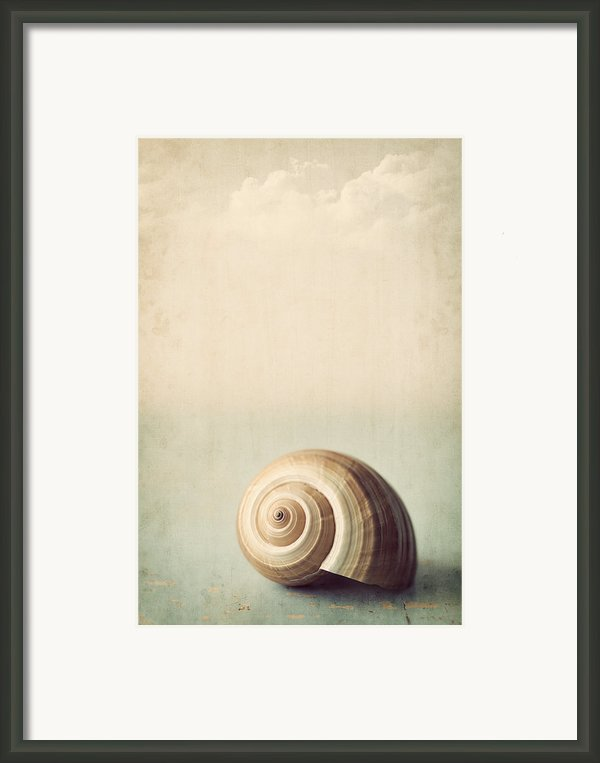 Sojourn Framed Print By Amy Weiss