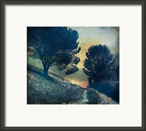 Somber Passage Framed Print By Bedros Awak