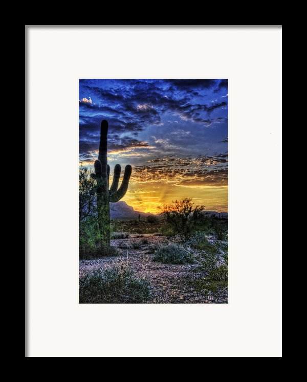 Sonoran Sunrise  Framed Print By Saija  Lehtonen
