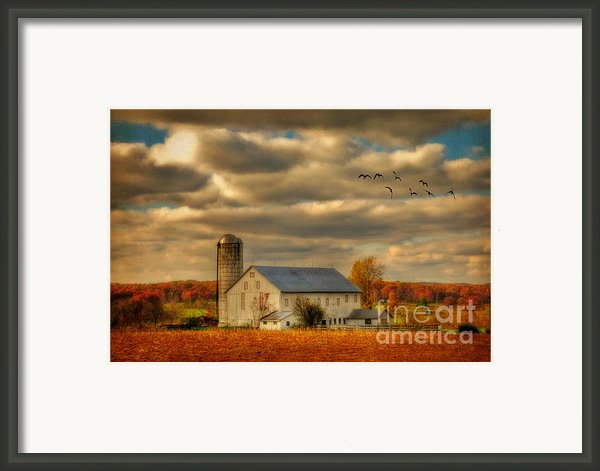 South For The Winter Framed Print By Lois Bryan