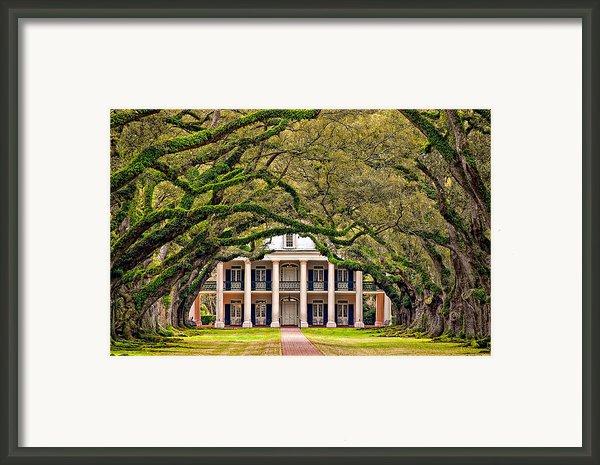 Southern Class Framed Print By Steve Harrington