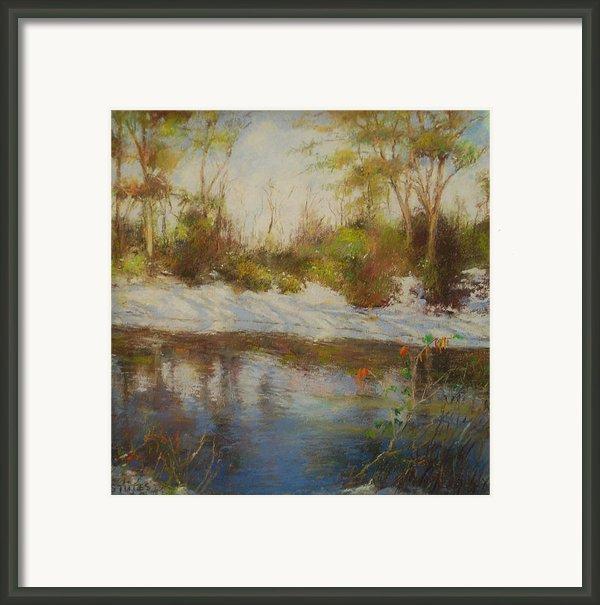 Southern Landscapes   Framed Print By Nancy Stutes