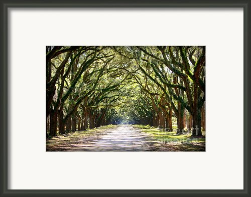 Southern Way Framed Print By Carol Groenen