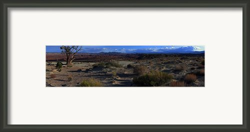 Southwest Snake Canyon Framed Print By Maria Arango