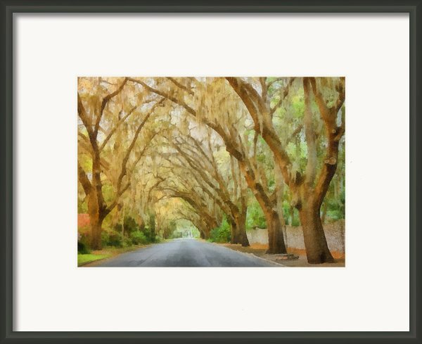 Spanish Moss - Symbol Of The South Framed Print By Christine Till
