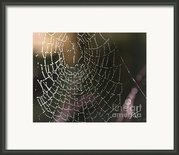 Spiderweb Green Framed Print By Artist And Photographer Laura Wrede