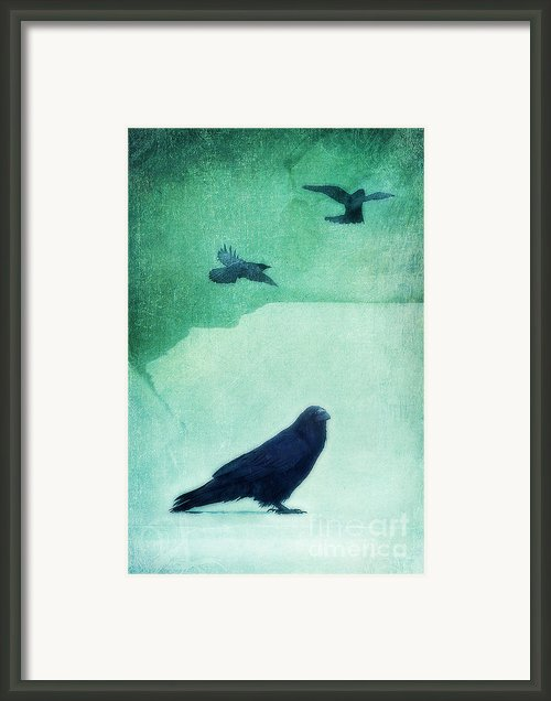 Spirit Bird Framed Print By Priska Wettstein