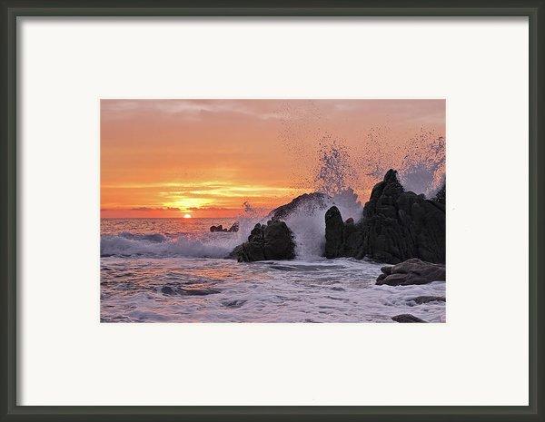 Splash  Framed Print By Marcia Colelli