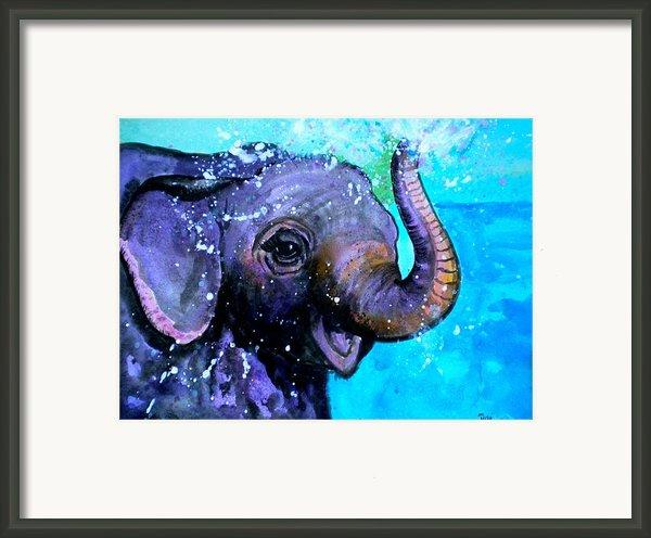 Splish Splash Framed Print By Debi Starr