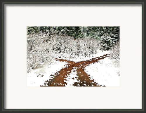 Split Decision Framed Print By Marilyn Hunt