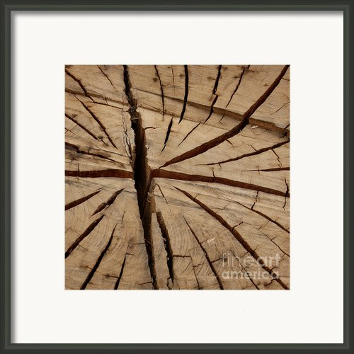 Split Wood Framed Print By Art Block Collections