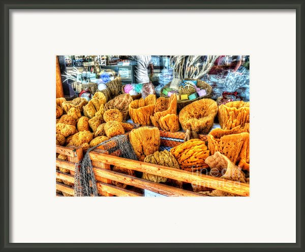 Sponge Worthy Framed Print By Debbi Granruth