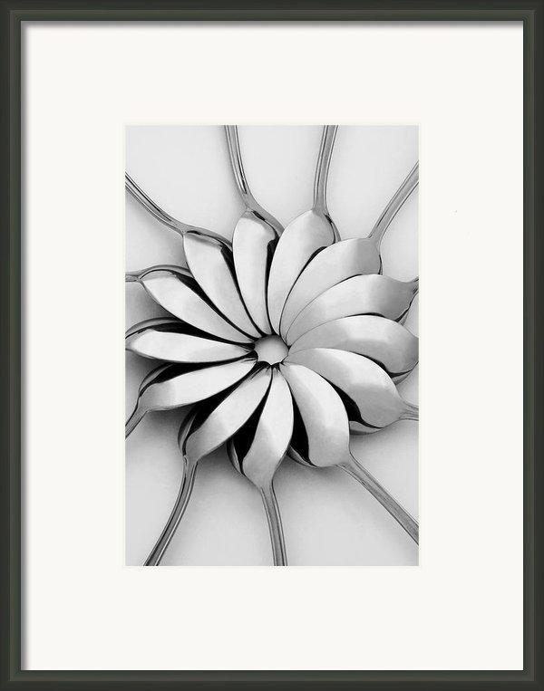 Spoons I Framed Print By Natalie Kinnear