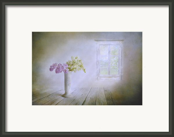 Spring Dream Framed Print By Veikko Suikkanen