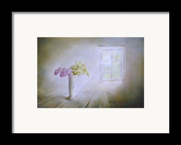 Spring Dream Framed Print By Veikko Suikkanen