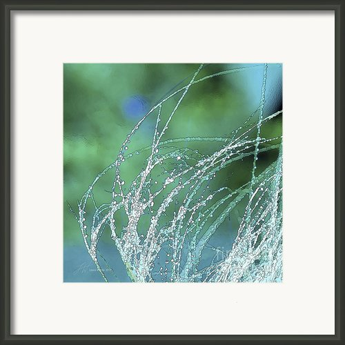 Spring Grass Framed Print By Author And Photographer Laura Wrede