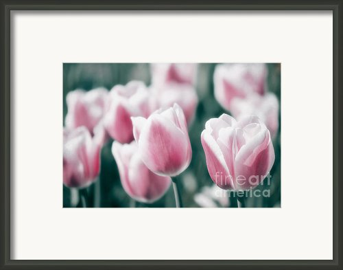 Spring In Love Framed Print By Angela Doelling Ad Design Photo And Photoart