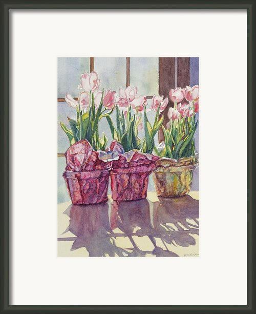 Spring Shadows Framed Print By Jan Landini
