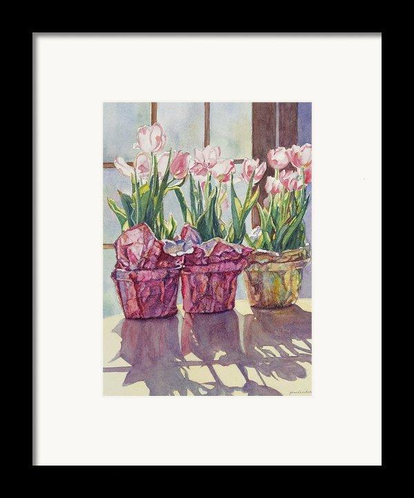 Spring Shadows Framed Print By Jan Landini