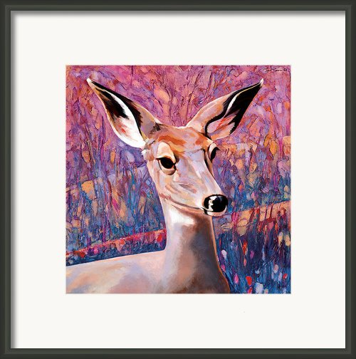 Springtime Colors Framed Print By Bob Coonts