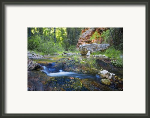 Springtime In The Canyon Framed Print By Peter Coskun