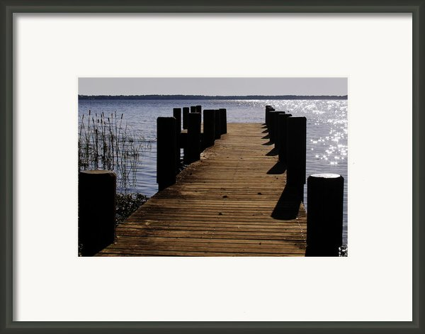 St Johns River Florida - A Chain Of Lakes Framed Print By Christine Till