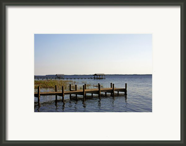 St Johns River Florida - Walk This Way Framed Print By Christine Till