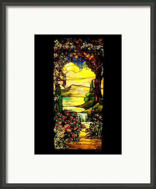 Stained Landscape Framed Print By Donna Blackhall