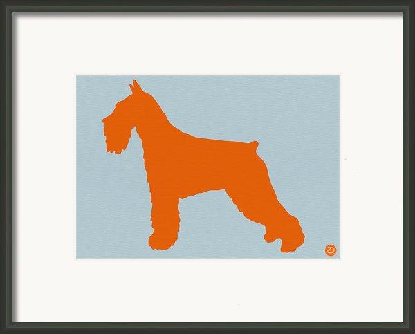 Standard Schnauzer Orange Framed Print By Naxart Studio