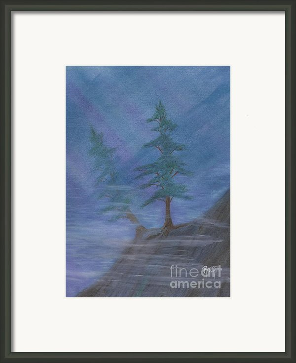 Standing Alone Framed Print By Robert Meszaros