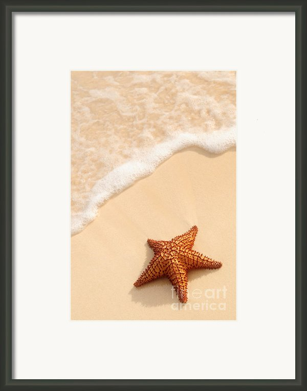 Starfish And Ocean Wave Framed Print By Elena Elisseeva