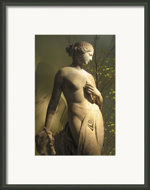 Statuesque Framed Print By Jessica Jenney