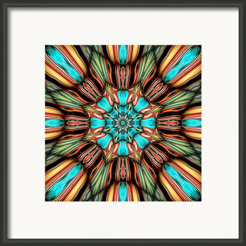Stella Framed Print By Wendy J St Christopher