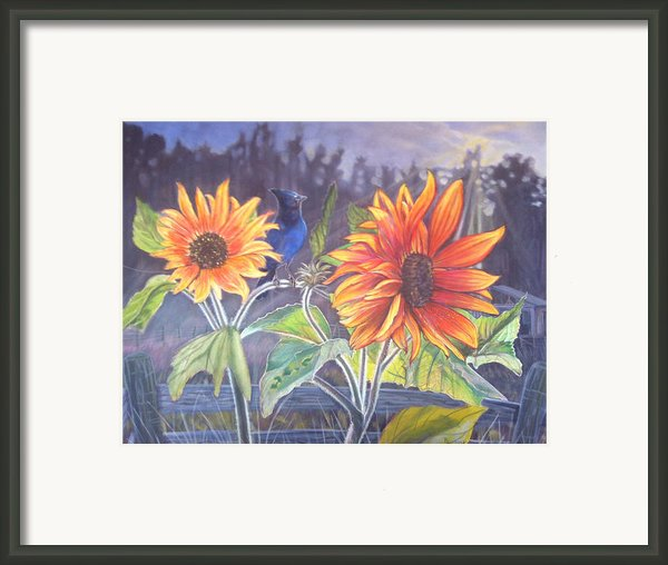 Stellar Sunflower Framed Print By Rayna Dehoog