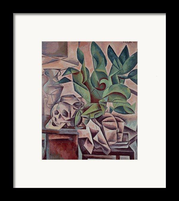Still Life Showing Skull Framed Print By Kubista Bohumil