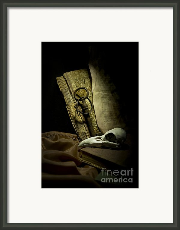 Still Life With A Bird Skull Framed Print By Jaroslaw Blaminsky