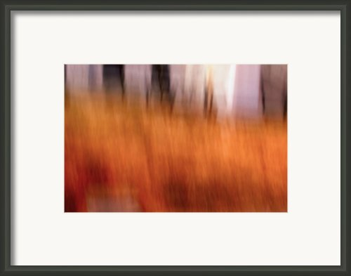 Stirrings - Abstract Art Framed Print By Laria Saunders