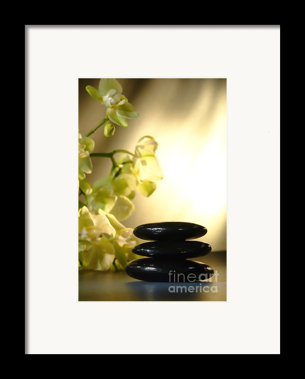 Stone Cairn And Orchids Framed Print By Olivier Le Queinec